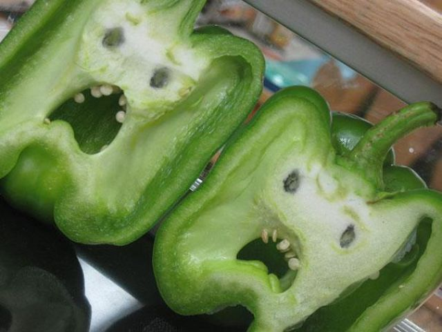 vegetables_that_are_desperately_trying_to_be_something_else_640_07