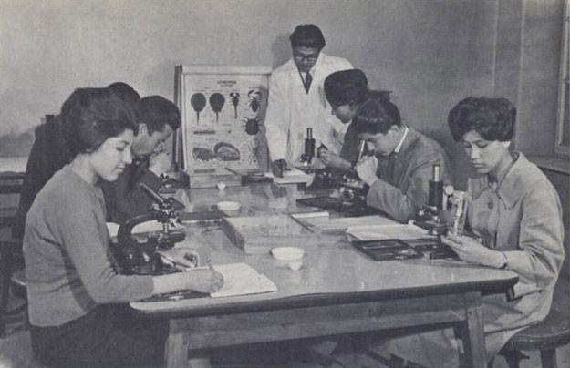 Mujeres-de-Afaganistan-25