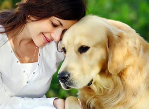 Perros-huelen-cáncer-de-los-ovarios