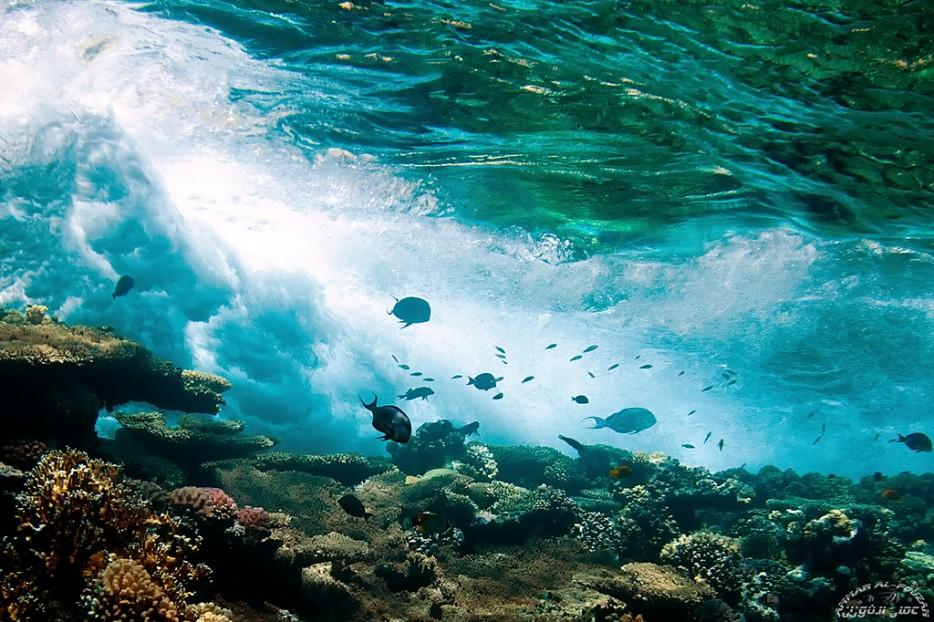 Playas-cristalinas-31