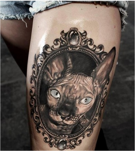 catlove