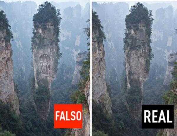 falsooreal8