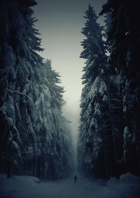 inmensidad-naturaleza14