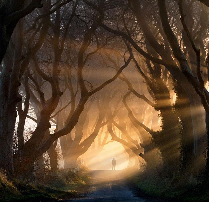 inmensidad-naturaleza22