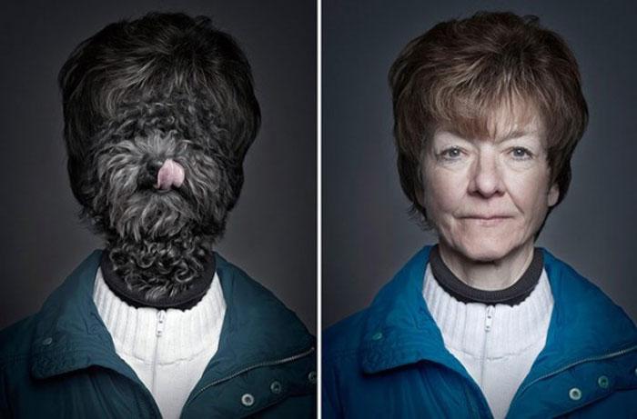 mascotas-humanos1