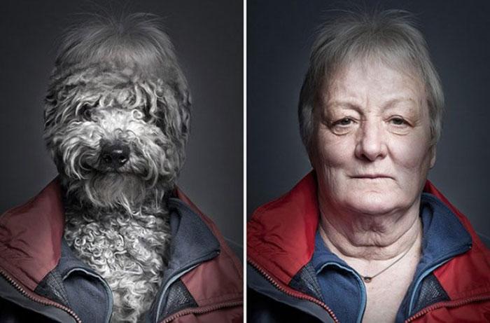 mascotas-humanos6