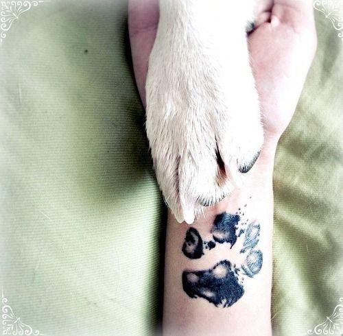 pet-tattoo4