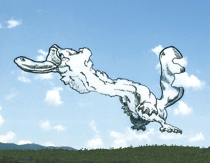shaping-clouds-creative-illustrations-tincho-10