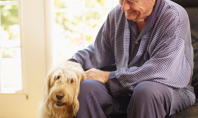 terapia-ancianos-perros-foto-668x400x80xX