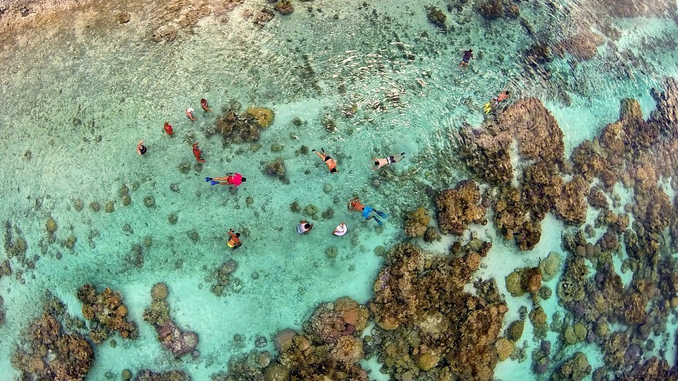 Snorkeling-in-the-coral-garden-of-Taha'a-lagoon-Marama-Photo-Video
