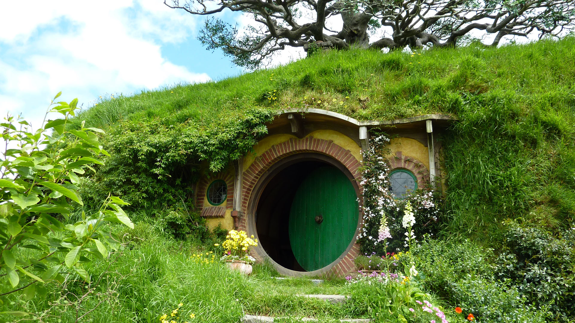Behind-the-Scenes-of-Hobbiton-in-New-Zealand