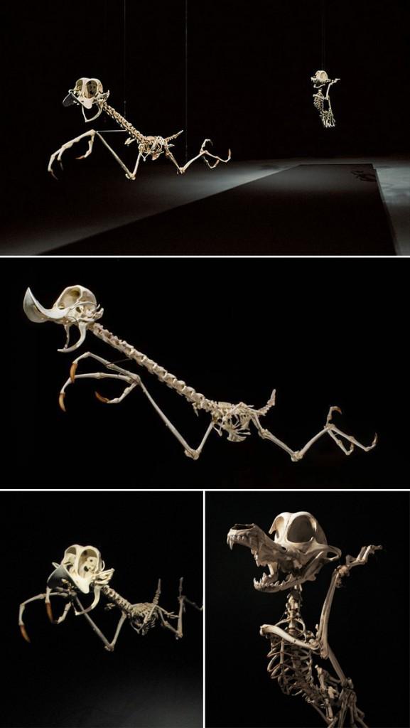 esqueletos-animados-1