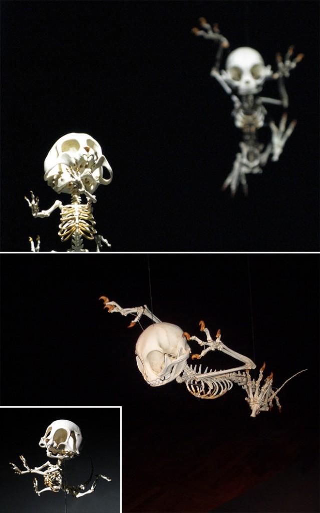 esqueletos-animados-2