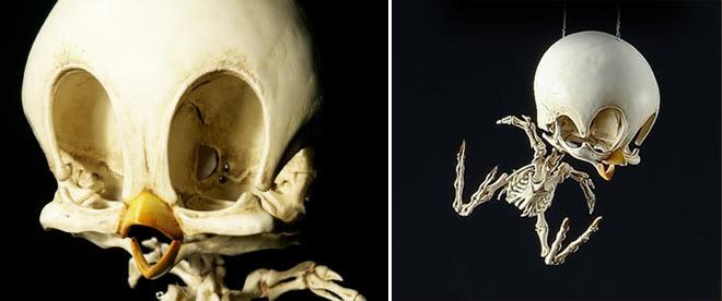 esqueletos-animados-4