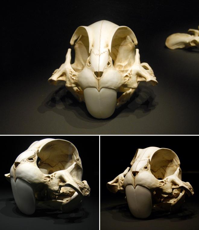 esqueletos-animados-6