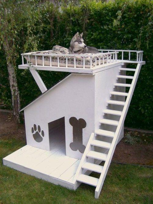 dog-houses10