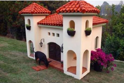 dog-houses17