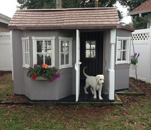 dog-houses23