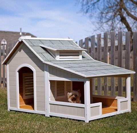 dog-houses6