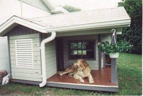 dog-houses8
