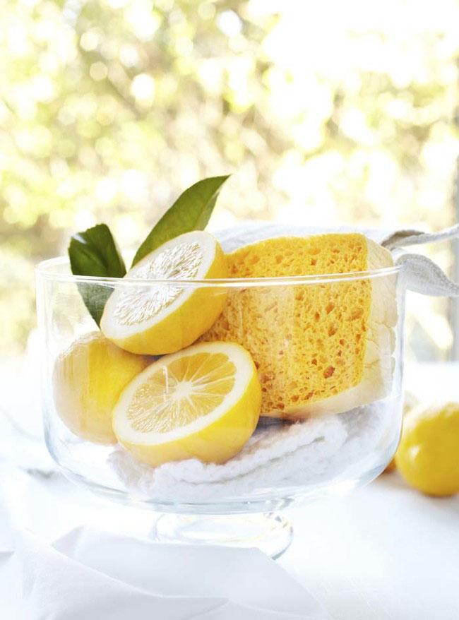 usos-limon17