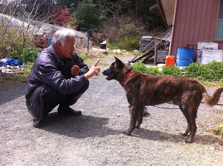 fukushima-radioactive-disaster-abandoned-animal-guardian-naoto-matsumura-7