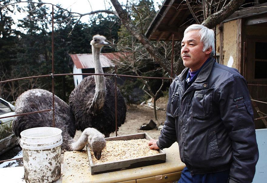fukushima-radioactive-disaster-abandoned-animal-guardian-naoto-matsumura-9