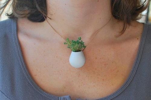 plants-jewelry15