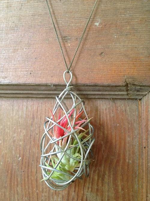 plants-jewelry16