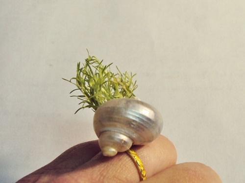 plants-jewelry18