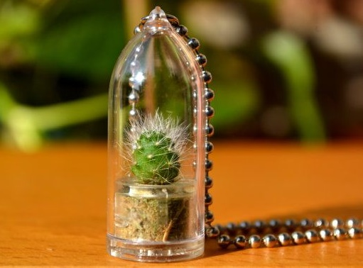 plants-jewelry3
