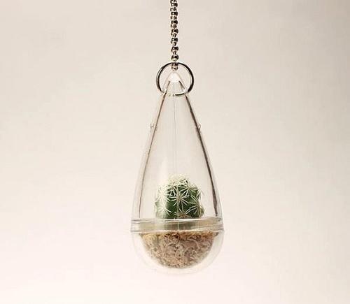 plants-jewelry5