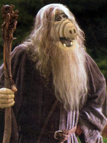 Z.-Alf-ya-debe-ser-abuelo