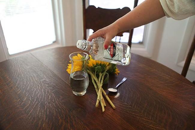 alcohol-en-casa-1