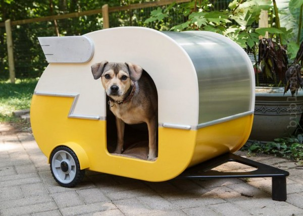camping-dog-products11-600x428