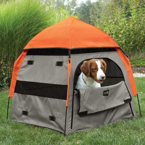 camping-dog-products12-600x600