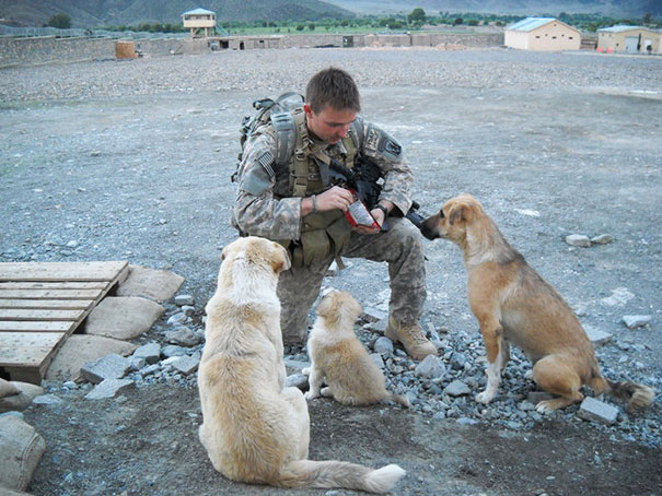 soldier-with-pet-22__605