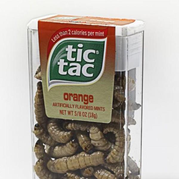 tic-tac-boxes11-600x600
