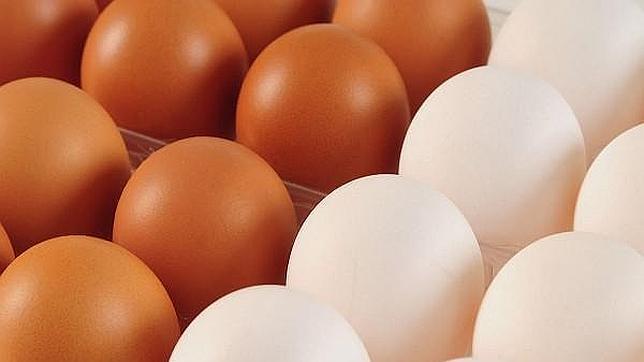 huevos_pardos_huevos_blancos--644x362