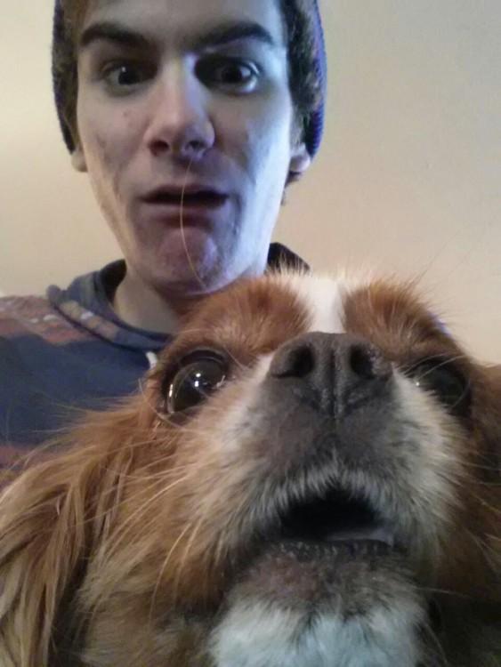 selfies-de-perros-15-563x750