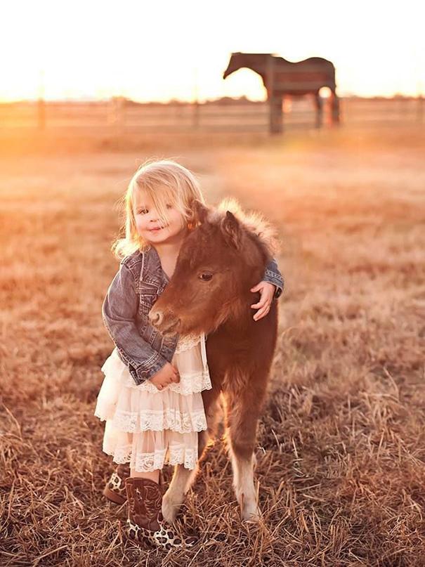 tiny-horses-15__605