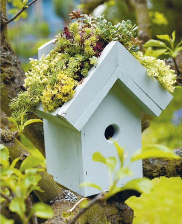 Mini-jardines-14-608x750