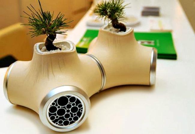 Mini-jardines-15