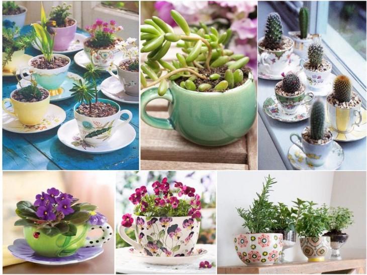 Mini-jardines-17-730x548
