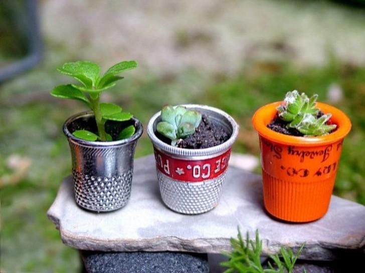 Mini-jardines-7