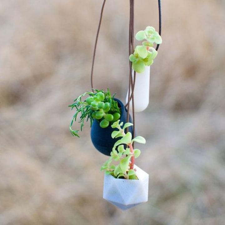 Mini-jardines-9
