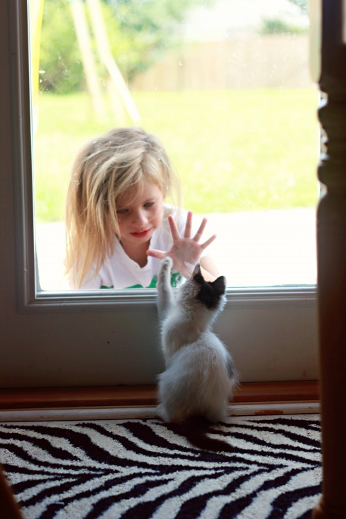 Niños-que-se-creen-animales-2-500x750