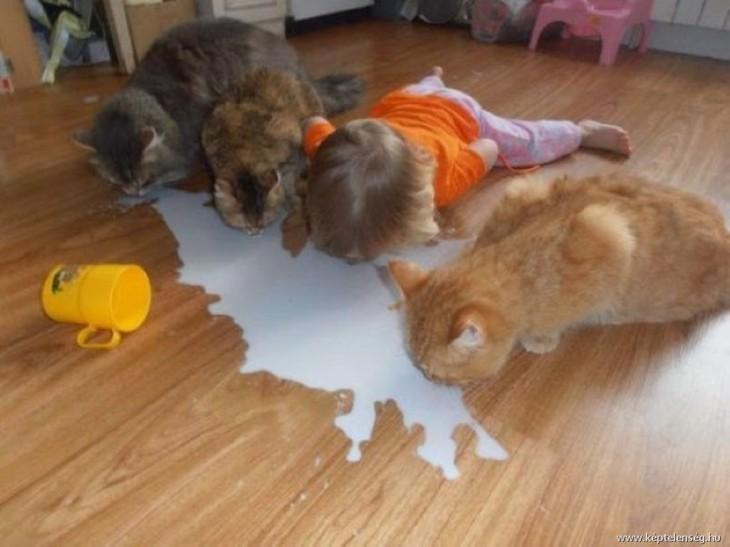 Niños-que-se-creen-animales-5-730x547