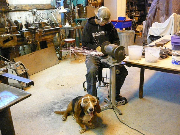 bring-puppy-to-work-20__605