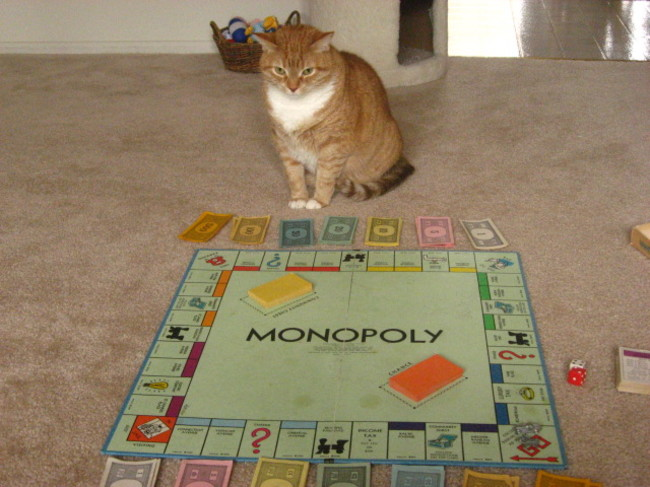 monopoli-gato-reddit-com
